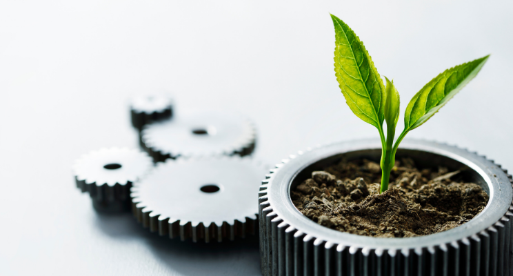 Breaking Down Socially Responsible Investing